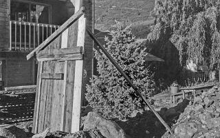 © Gary Metz. Quaking Aspen: a Lyric Complaint.
