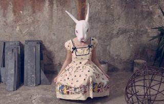 ©Rossana Mendes Fonseca - Animals series