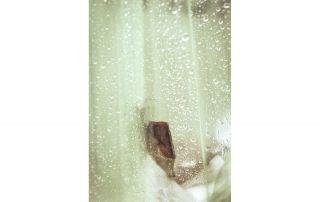 ESSENCE #6, Parfum de Paris -Alice's Nihilism-